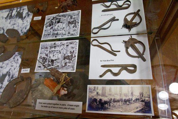 KPHS exhibit 2018 Timber-r-r! Logging the Key Peninsula